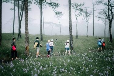 เที่ยวเดินป่า